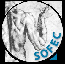 http://gadea-orthopedie.fr/wp-content/uploads/2018/01/logo-sofec.png